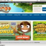 Monkeybingo Discover Card