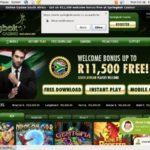 SpringBok Casino Free Spins Bonus