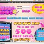 Zingo Bingo Euros