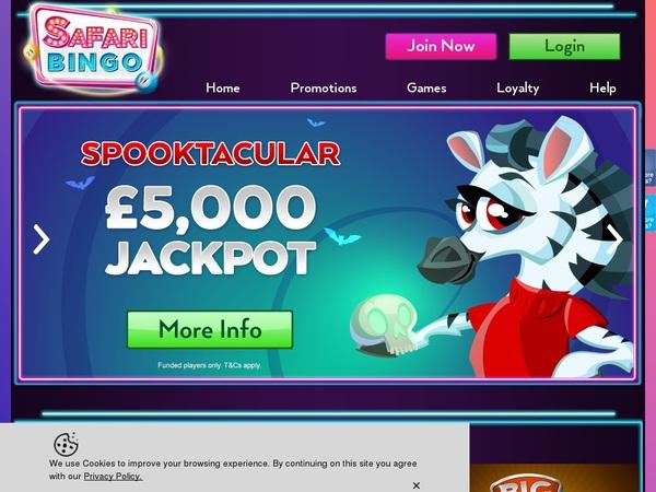 Safaribingo Casino Review